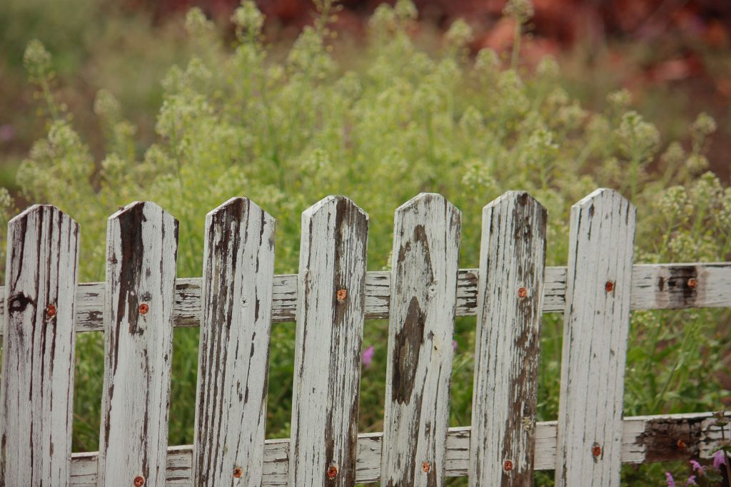 old fence for the skip